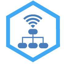 Networking Services Icon